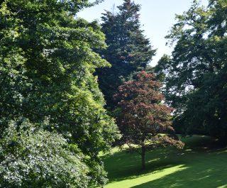 Stranmillis College grounds